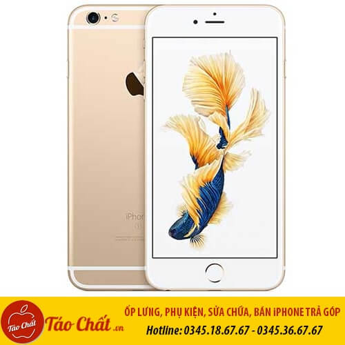 iPhone 6S Plus Màu Gold Taochat.vn